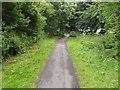 TA1537 : Hornsea Rail Trail #10 by Steve  Fareham