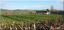 SY4797 : Barn, Waytown by Derek Harper
