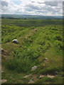 NY6866 : Eastern side of Milecastle 44, Hadrian's Wall by Karl and Ali
