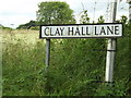 TM0280 : Clay Hall Lane sign by Adrian Cable