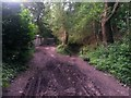 SZ0895 : Redhill: last garage access on Sandy Way by Chris Downer