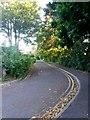 SZ0793 : Winton: south from Glenmoor Road on bridleway N03 by Chris Downer