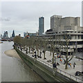 TQ3080 : The Queen's Walk, South Bank by the National Theatre, London by Robin Stott