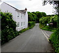 SS0698 : Rose Cottage, Manorbier by Jaggery