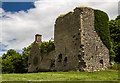 N0626 : Castles of Leinster: Clonlyon, Co. Offaly (1) by Mike Searle
