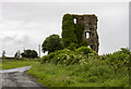 N7061 : Castles of Leinster: Fraine, Co. Meath (2) by Mike Searle