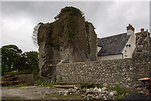 N5757 : Castles of Leinster: Killagh, Co. Westmeath (1) by Mike Searle