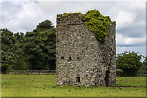N8718 : Castles of Leinster: Castle Rag, Co. Kildare (2) by Mike Searle