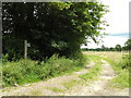 TM0178 : Footpath to Hinderclay Fen by Adrian Cable