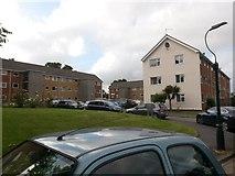 SZ0995 : Redhill: Redhill Court, Portswood Drive by Chris Downer