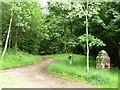 NY7022 : Public footpath alongside Swine Gill, Flakebridge by Christine Johnstone