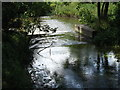 TL9580 : Weir on the Little Ouse River by Adrian Cable