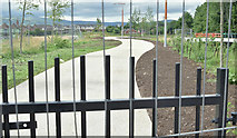 J3673 : New path, Grand Parade, Belfast (July 2016) by Albert Bridge