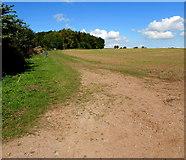 SO6031 : Public footpath through the edge of a Brockhampton field by Jaggery