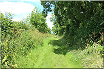NX4355 : Path to the Bladnoch Road by Billy McCrorie