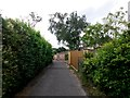 SZ0595 : West Howe: this driveway is footpath U02 by Chris Downer