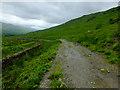 NN3624 : West Highland Way near Keilator by John Allan
