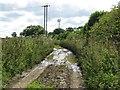 SY6194 : Muddy track near Longlands Farm by Becky Williamson