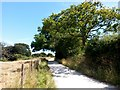 SZ1096 : Throop: the Stour Valley Way heads east by Chris Downer