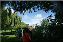 TQ1672 : View of Radnor House Independent School from the riverside path by the Thames in Radnor Gardens by Robert Lamb