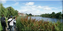 TQ1672 : View along the River Thames from the riverside path in Radnor Gardens by Robert Lamb
