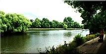 TQ1773 : View back along the Thames towards Twickenham by Robert Lamb