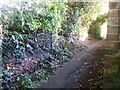 SZ0790 : Westbourne: from Poole into Bournemouth on footpath 63 by Chris Downer