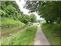 ST7862 : Cycling on the towpath of the Kennet and Avon Canal by David Smith
