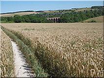 TQ5365 : Darent Valley Path by Marathon