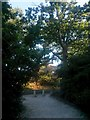 SZ1194 : Strouden: bridleway K35 reaches Woodbury Avenue by Chris Downer