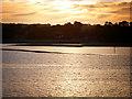 SU4804 : Southampton Water, Mudbanks near Hamble Spit by David Dixon