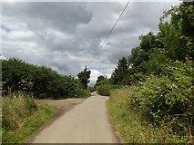 TL2012 : Cromer Hyde Lane, footpath & bridleway by Adrian Cable