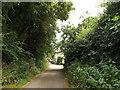 TL2012 : Cromer Hyde Lane, Cromer Hyde by Geographer