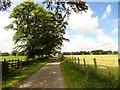 NZ1143 : Looking along the lane by Robert Graham