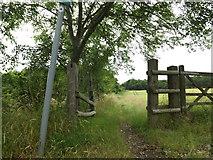 TL1814 : Footpath off Codicote Road by Geographer