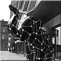 SK3487 : Herd of Sheffield: Lizzietron 2.2 by Graham Hogg