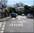 SS7798 : Speed hump across Wenallt Road, Tonna by Jaggery