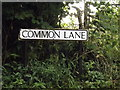 TL1415 : Common Lane sign by Adrian Cable