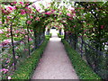 ST5071 : The Rose Garden, Tyntesfield by PAUL FARMER