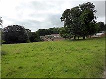 ST5071 : Home Farm, Tyntesfield by PAUL FARMER