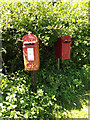 TM0580 : Low Common George V  Postbox & Birdbox by Adrian Cable