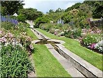 SX9050 : The Rill Garden at Coleton Fishacre, Devon by Derek Voller