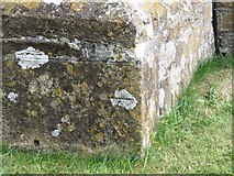 SY5697 : Benchmark on St Andrew's and St Peter's Church, Toller Porcorum by Becky Williamson