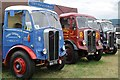 SO8040 : Vintage lorries at Welland Steam Rally by Philip Halling