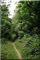 TQ1452 : Footpath to Chapelhill Wood by Peter Trimming