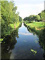 SE8530 : Sun  and  reflections  on  Market  Weighton  Canal  Newport by Martin Dawes