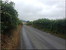TQ5959 : Kemsing Road, near Wrotham by Chris Whippet