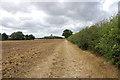 SK9351 : Track along field edge by Julian P Guffogg