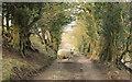 SJ9577 : Track down to Harrop Vale by Peter Turner