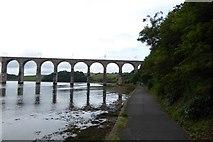 NT9953 : River path and rail bridge by DS Pugh